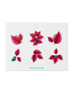 VOUKAMVILIA SET OF 12