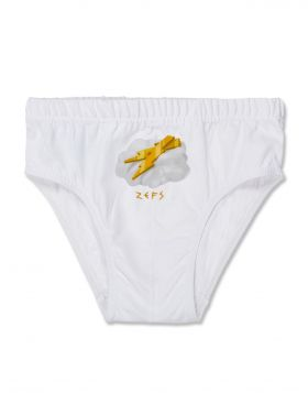 ZEFS ELEMENT BRIEF PLAIN